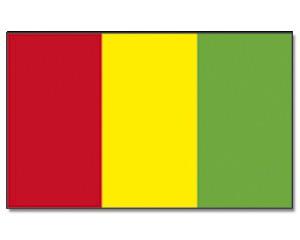 Guniea Flagge 90 x 150 cm