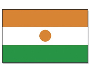 Niger Stockfahne 30cm x 45 cm