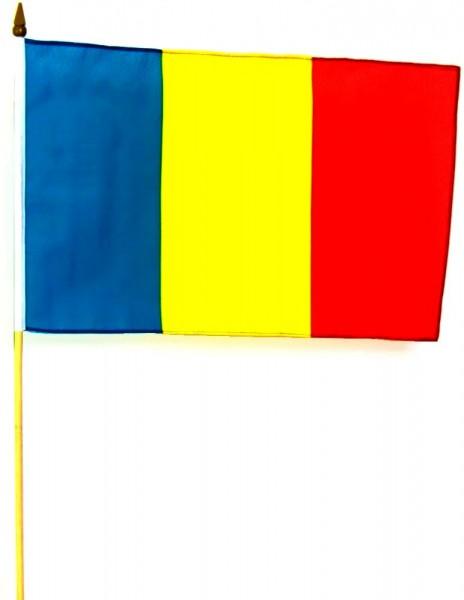 Rumänien Hohlsaumfahne 30x45 cm