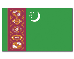 90 x 150 cm Fahne Flagge Ostturkestan