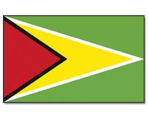Guyana Stockfahne 30cm x 45 cm