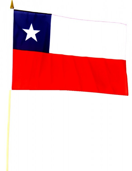 Chile Stockfahne 30cm x 45cm