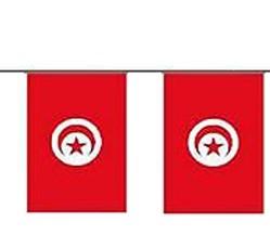 Tunesien Länderkette 3 m - 10 Flaggen á 15x22,5cm