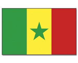 Senegal Stockfahne 30cm x 45 cm