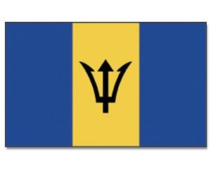 Barbados Stockfahne 30cm x 45 cm