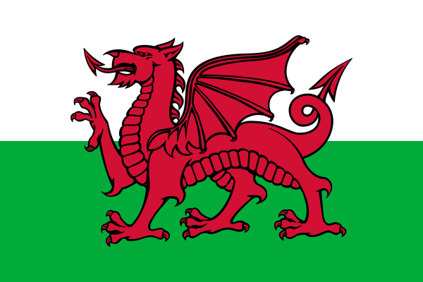 Wales Fahne/Flagge - 60cm x 90cm