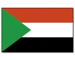 Sudan Stockfahne 30cm x 45 cm