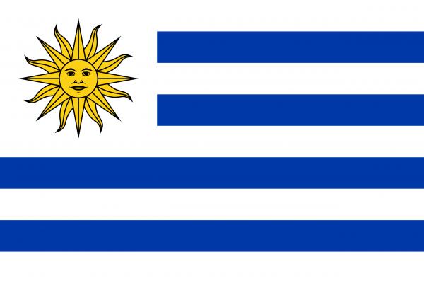 Uruguay Flagge 150 x 250 cm