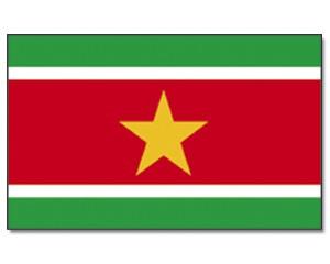 Surinam Flagge 90 x 150 cm